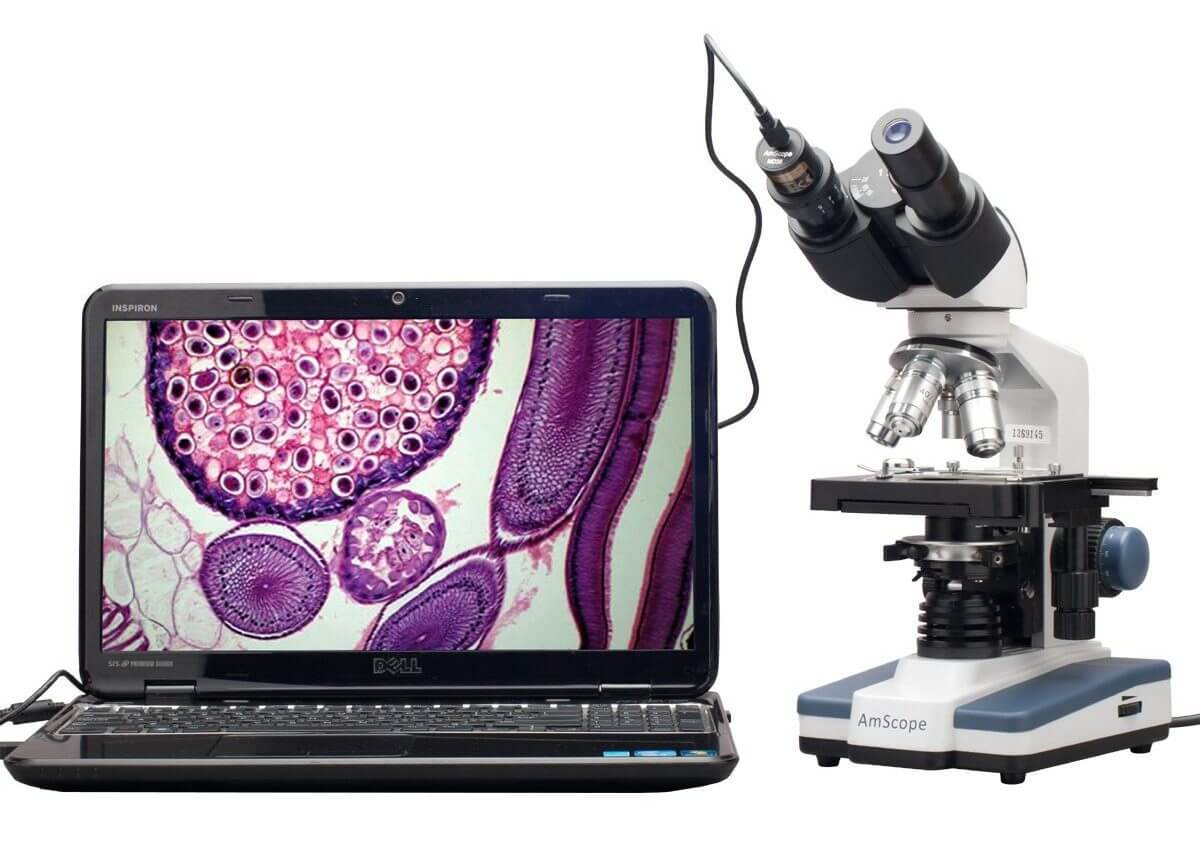 National Geographic 40x-1024x Microscope valise et oculaire USB compris